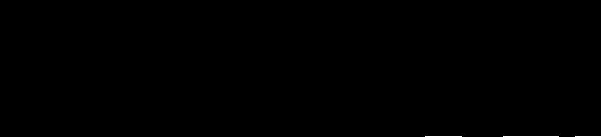 Paul Landers PL1 Fly Rig Logo